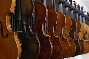 A row of 10 violins on a shelf